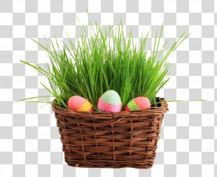 Easter Bunny Easter Egg Basket - Easter Egg Basket PNG