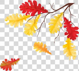 Autumn Leaves Leaf Tree Clip Art - Autumn Leaves PNG