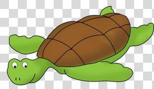 Sea Turtle Clip Art - Sea Turtle Cliparts PNG
