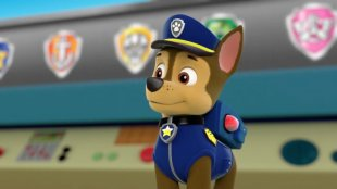 Puppy Dog Sea Patrol: Pups Save Puplantis Pups And The Ghost Pirate Pups Save The Easter Egg Hunt - Paw Patrol PNG