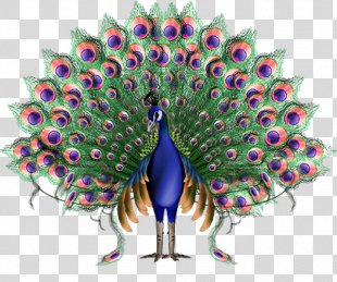 Krishna Animation Peafowl - Peacock PNG