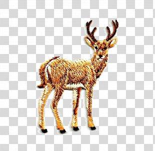 Reindeer Rennes Drawing - Cartoon Reindeer PNG