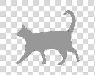 Cat Food Felidae Hyperthyroidism Feral Cat - Cat PNG