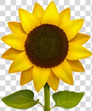 Emoji Common Sunflower Sticker IPhone - Emoji PNG
