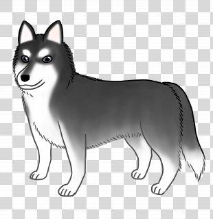 Sakhalin Husky Siberian Husky Dog Breed Whiskers - Siberian Husky PNG