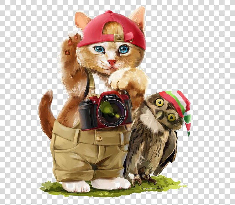Cat Kitten Art Drawing, Watercolor Cat PNG