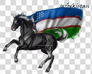 Horse & Hound Stallion Uzbekistan DeviantArt - Horse PNG