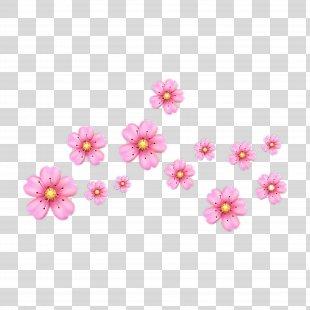 EMOJI CRAFT PicsArt Photo Studio Sticker Emoji War - Emoji PNG