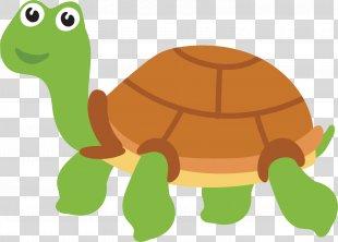 Sea Turtle Tortoise - Hand Painted Sea Turtle Vector PNG
