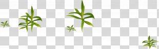 Grass Gratis - Grass PNG