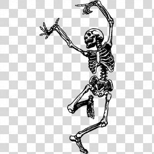 Skeleton Dance Skull Drawing Bone - Skeleton PNG