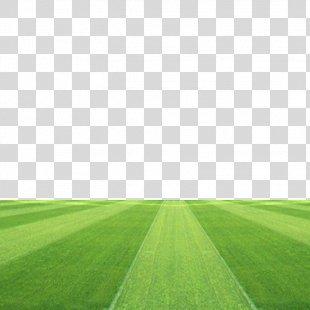 Football Pitch Grassland Stadium - Football Field PNG