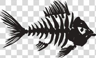 Skeleton Fish Bone Fish Bone Clip Art - Skeleton PNG