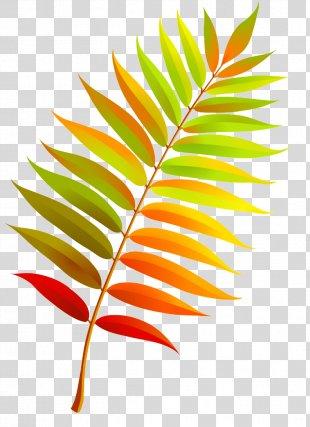 Autumn Leaves Clip Art Leaf - Autumn Leaves PNG