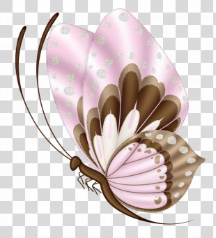 Butterfly Clip Art Drawing Image - Butterfly PNG