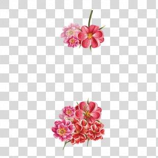 Floral Design - Continental Floral Border FIG. PNG