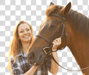 Horse Equestrian Bridle Leavenworth Stallion - Horse PNG
