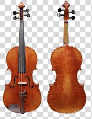 Violin Family String Instruments Stradivarius Cello - Violin PNG