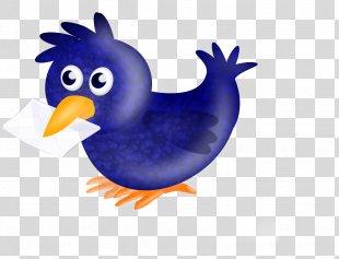 English Carrier Pigeon Racing Homer Homing Pigeon Bird Columbidae - Pigeon PNG