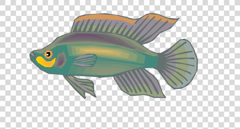 Euclidean Vector Yellow Grey, Vector Gray Ornamental Fish Material PNG