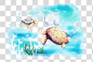 Sea Turtle Drawing - Sea Turtle PNG