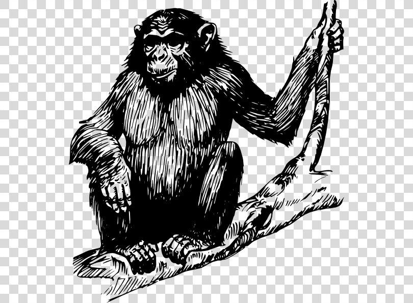 Chimpanzee Ape Gorilla Clip Art, Gorilla Vector PNG