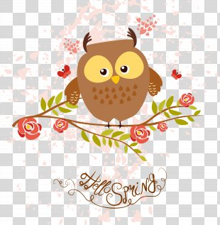 Bird Little Owl Drawing Euclidean Vector - Owl Vector PNG
