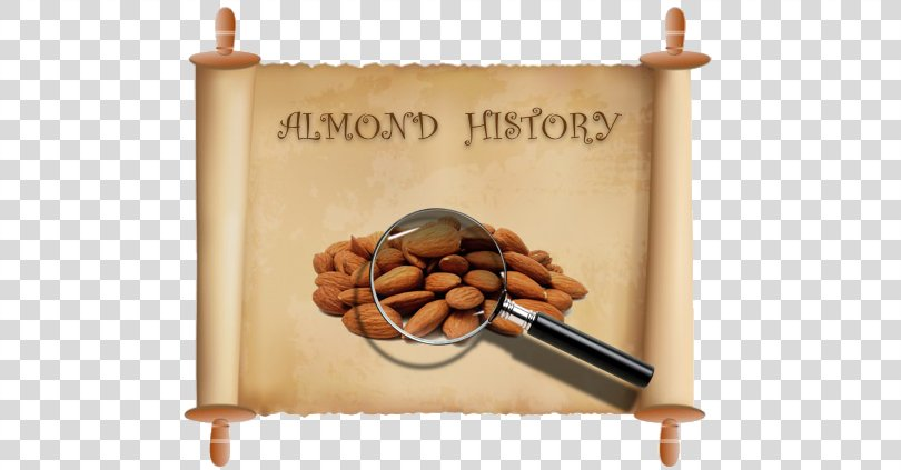 Prymage Consultancy Ltd Photograph Flavoring 1 Dram Vector Graphics Image, Almonds History PNG
