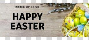 Easter Bunny Public Holiday Christmas Egg Hunt - Bank Holiday PNG