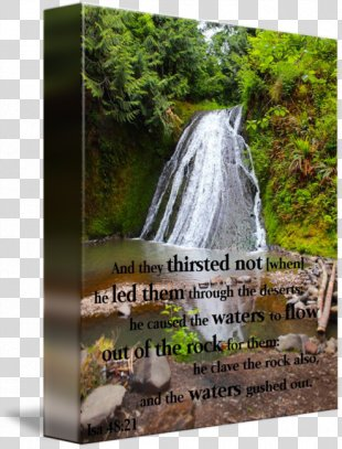 Waterfall Nature Reserve Quotation Water Resources - Waterfall Scenery PNG