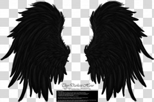 Wings Winged Cat Butterfly - Wings PNG