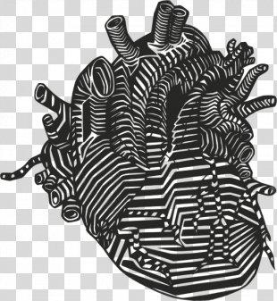 Heart Drawing Anatomy Clip Art - Human Heart PNG
