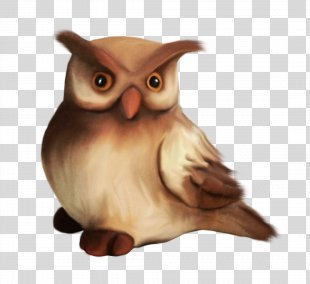 Little Owl Drawing - Owl PNG