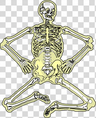 Skeleton Bone Space Science Clip Art - Skeleton PNG