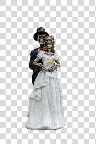 Skeleton Coast Skull - Skeleton PNG