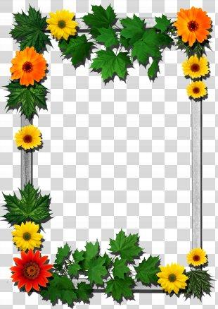 Picture Frames Flower - Flower Frame PNG