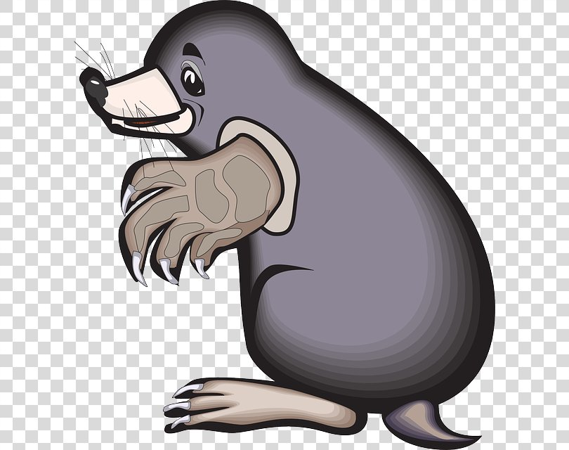Animation Mole Clip Art, Glass Broken Lines PNG