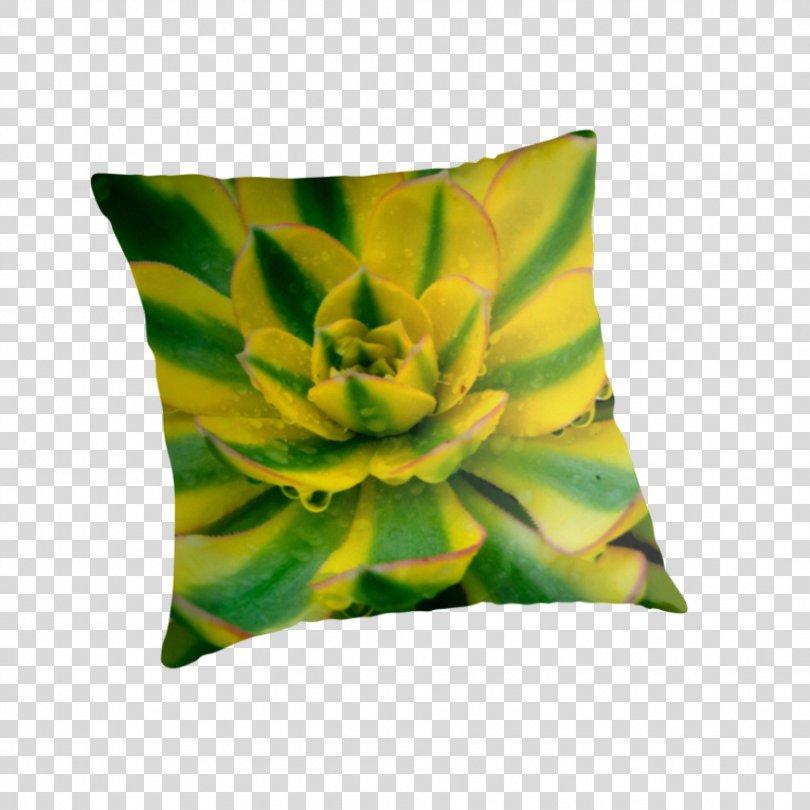 Throw Pillows Cushion Tote Bag Green, Echeveria PNG