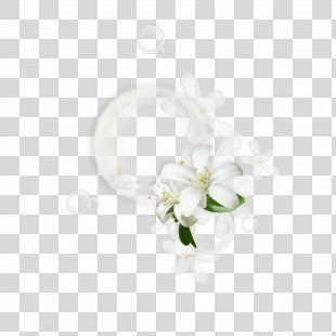 Floral Design Flower - Floral Border Creative Floral Border Vector Background Material PNG