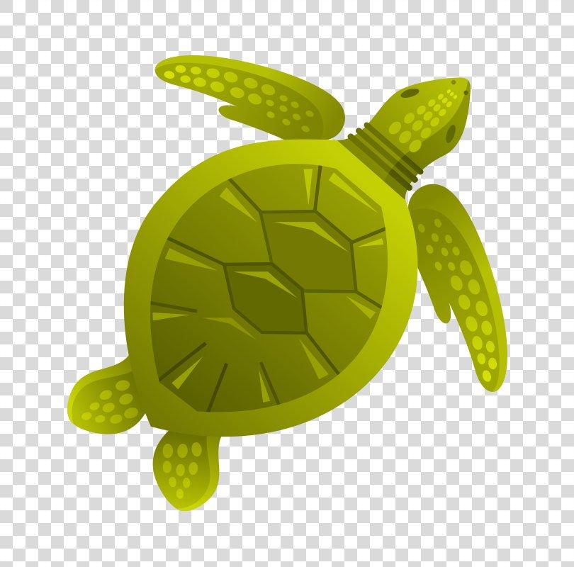 Turtle Aquatic Animal Sea Clip Art, Marine Life,Sea Creatures PNG