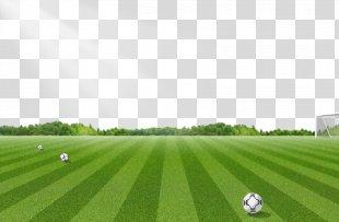 Football Pitch Lawn - Football Field Pattern PNG