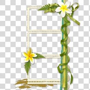 Floral Design Picture Frame Flower - Floral Design Creative Floral Border Art PNG