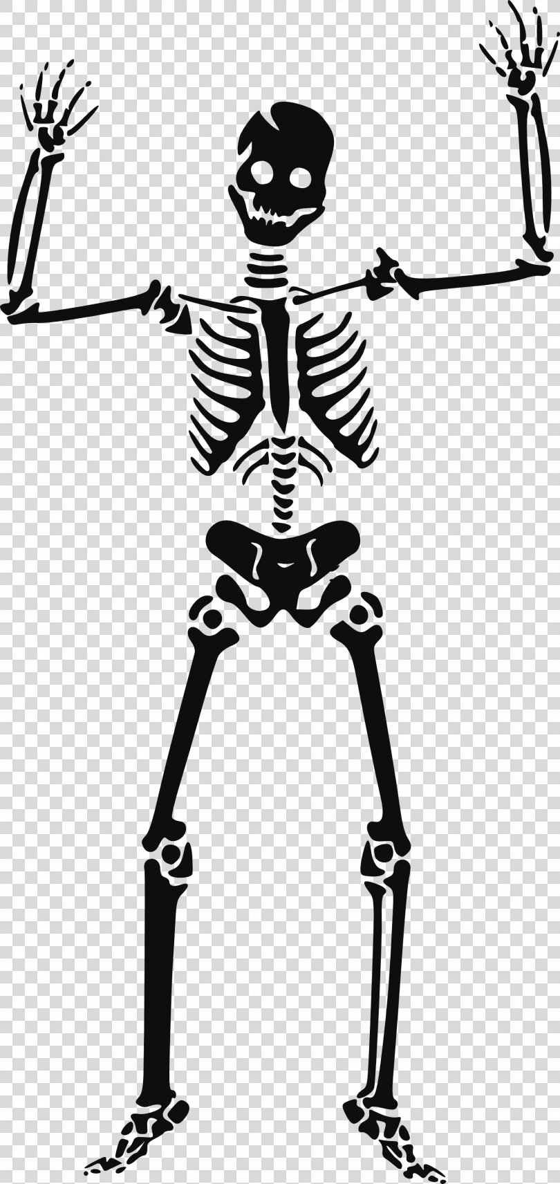 Human Skeleton Clip Art, Skeleton Siluet Image PNG