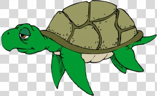 Green Sea Turtle Free Content Clip Art - Sea Turtle Cliparts PNG