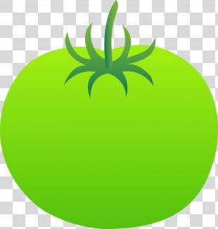 Fried Green Tomatoes Vegetable Fruit Clip Art - Vegetable PNG