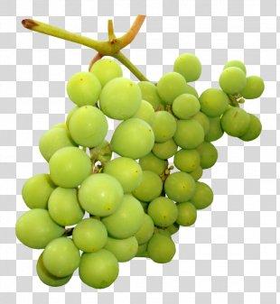 Grape Fruit Clip Art Image - Grape PNG