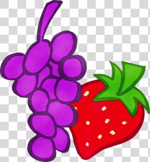 Violet Grape Fruit Clip Art Purple - Radish Grapevine Family PNG