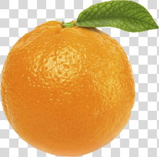 Orange Juice Desktop Wallpaper Clip Art - Orange PNG