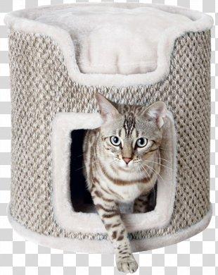 Cat Tree Scratching Post Cat Food Felidae - Cat PNG