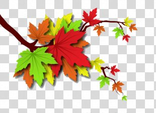 Autumn Leaves Leaf Illustration - Autumn Leaves PNG